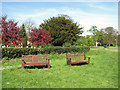 TL8261 : Commemorative seats on the village green, Horringer by Evelyn Simak