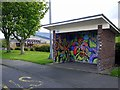NZ1062 : Decorated bus shelter, Stonyflat Bank, Prudhoe by Andrew Curtis