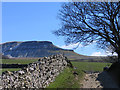 SD8172 : Pennine Way east of Horton in Ribblesdale by Trevor Littlewood