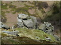 SK1288 : Rock formation below the Blackden Edge path (1) by Andrew Hill