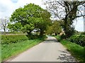 SJ7375 : Pinfold Lane by Christine Johnstone
