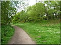 SJ7370 : Footpath at southern corner of Shakerley Mere by Christine Johnstone
