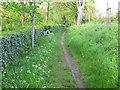 SK6202 : Path along Shady Lane by Mat Fascione