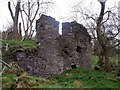 NS8774 : Easter Jaw, ruins by Robert Murray