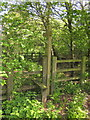 ST3316 : Stile by the A358 by Derek Harper