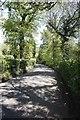 TQ0247 : Bend on Halpenny Lane by Bill Nicholls