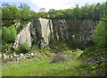 SJ3904 : Disused quarry at Poles Coppice by Dave Croker