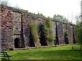 SK0247 : Lime kilns at Froghall Wharf by Graham Hogg