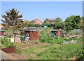 SP1855 : Allotments, Church Lane, Shottery by David P Howard