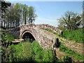 SJ4765 : Packhorse Bridge at Hockenhull Platts by Jeff Buck