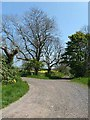 NZ0385 : Junction at Prior Hall by Oliver Dixon
