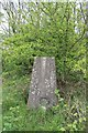 TF3169 : Hagworthingham Trig S5257 by J.Hannan-Briggs