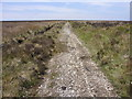 SJ2650 : Track leading down to Park Lead Mines by John Harrison