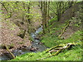 SO0671 : Stream, Cwm Cyncoed by Andrew Hill