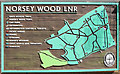 TQ6995 : Norsey  Wood map by Roger Jones