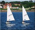 J5182 : Boats, Balyholme Bay : Week 22