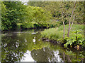 SD7406 : River Croal, Moses Gate Country Park by David Dixon