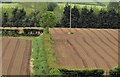 J2964 : Ploughed fields, Tullynacross near Lisburn (2) by Albert Bridge
