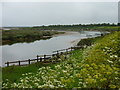 TF9844 : Stiffkey saltmarshes by pam fray
