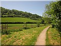 SY2088 : Path at Branscombe by Derek Harper