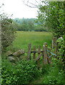 SK3264 : Footpath gate and meadows by Andrew Hill