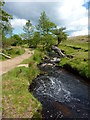 SK2580 : Burbage Brook by Peter Barr