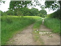 TF8316 : Footpath and shortcut at West Lexham by Jonathan Thacker