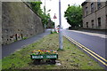 SE1539 : Baildon in Bloom exhibit on Browgate by Roger Templeman