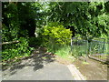 ST3288 : Two entrances to Beechwood Park, Newport by John Grayson