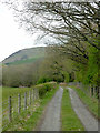 SO0259 : Farm road to Dyfnant near Newbridge, Powys by Roger  Kidd