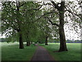 TQ2874 : Path on Clapham Common by David Anstiss