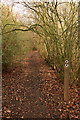 TL4164 : Footpath, Mansell Wood by Rob Noble
