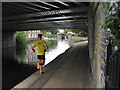 TQ3483 : Running under Cat and Mutton Bridge by Robin Stott