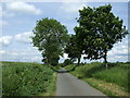 TL0865 : Lane heading north, Chadwell End by JThomas