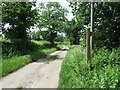 TL8633 : Footpath Sign Post by Keith Evans