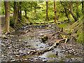 SJ9581 : Poynton Brook by David Dixon