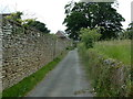 SK3860 : Walled lane, Ogston by Andrew Hill