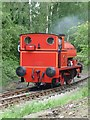 SE3029 : Saddletank steam loco at Park Halt by Christine Johnstone