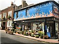 TQ3104 : Scent the florist, Brighton by Paul Gillett