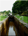 SJ8255 : Paired Locks No 44 west of Kidsgrove, Cheshire by Roger  Kidd