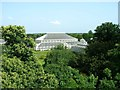 TQ1876 : Temperate House, Royal Botanic Gardens, Kew by Carolyn M Howard