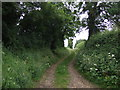 SK9301 : Farm track off Back Lane, South Luffenham by JThomas