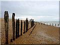 TQ9014 : Coastal defences, Pett Level : Week 27 winner