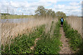 SJ5079 : Footpath alongside River Weaver by Dave Dunford