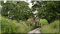 SE4691 : Cottage beside Bridge Beck by Trevor Littlewood