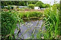 SJ8248 : Semi-hidden pond, Apedale Community Country Park, near Chesterton by P L Chadwick