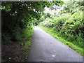W7170 : Cycle track, former railway from Rochestown to Cork by David Hawgood