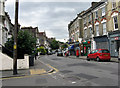 TQ3073 : Brixton:  Elm Park by Dr Neil Clifton