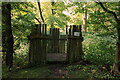 TL3363 : Badger viewing platform, Overhall Grove, Knapwell by Rob Noble