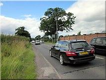SJ5264 : The A51 (Duddon Road) near Clotton by Jeff Buck